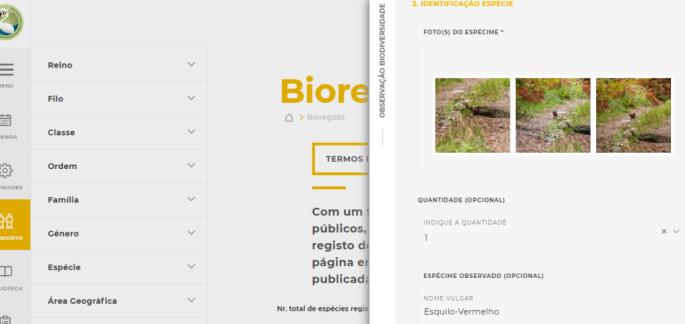bioregisto10